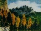 231 Il sole caldo dell'autunno
