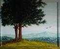 335 All'ombra del grande albero