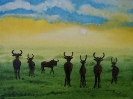 397 Parco Nazionale del Pilanesberg