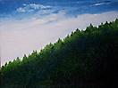 408 Il bosco che vive