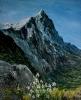 418 Eiger e Stelle Alpine
