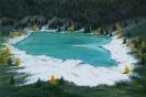 435 Il lago dei larici