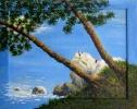 491 Gita alla roccia bianca